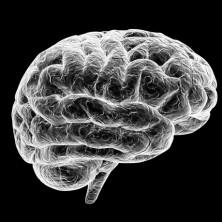 cognitive-training11