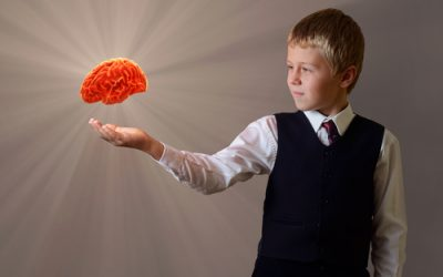 Brain Plasticity: A Hot Topic for Meditators as Well as Educators