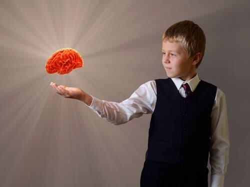 Brain Plasticity: A Hot Topic for Meditators as Well as Educators