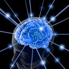 executive function treatment