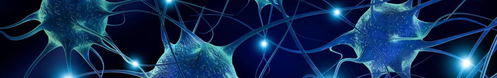 brain based programs