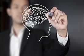 brain-drawing-transparent-board