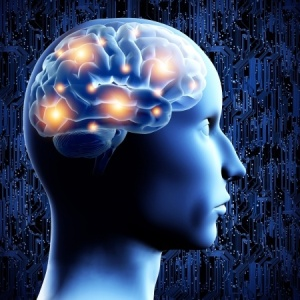 signs of working memory problems