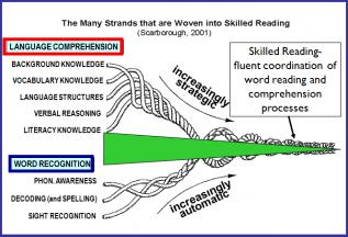 Skill Strands To Mastering Reading