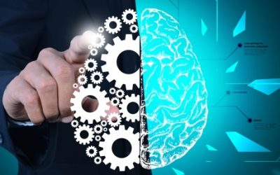 Brain Plasticity Opens New Doors For Struggling Learners