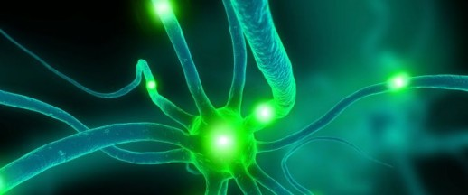 neurofeedback treatment options