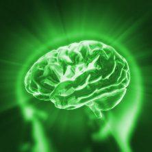 brain change, gemm learning