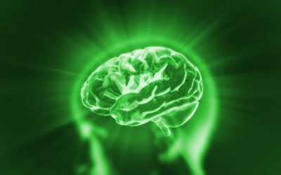 Brain Change and Potential for Growth