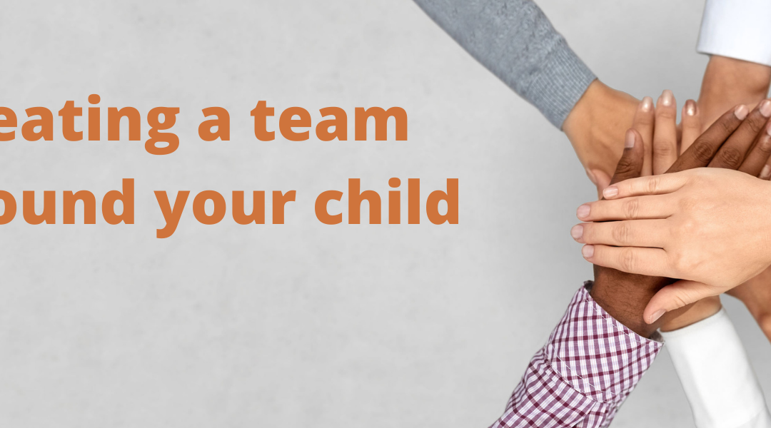Managing the Professionals Around Your Child